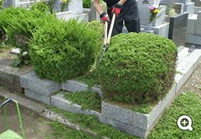 墓所内清掃リフォーム 佐倉市内寺院墓地