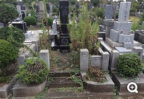 墓所内防草リフォーム 東京都立八柱霊園