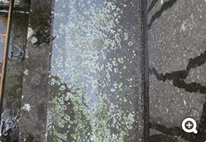 墓石クリーニング 船橋市内寺院墓地